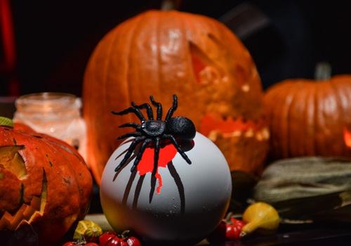 proslava-halloween-brankow