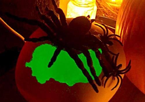 proslava-halloween-brankow16