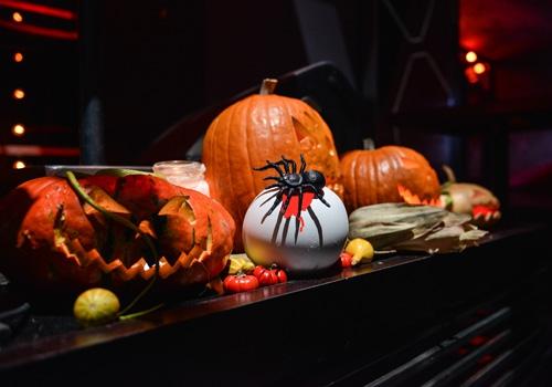 proslava-halloween-brankow2