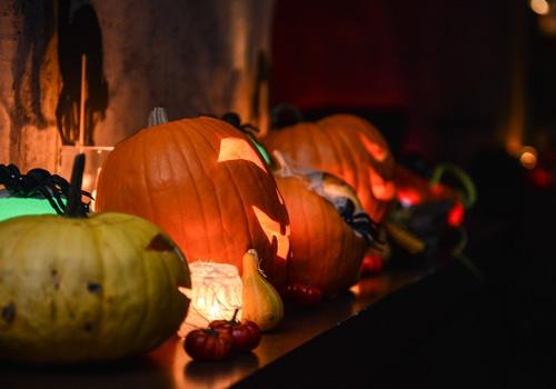 proslava-halloween-brankow6