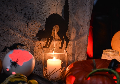 proslava-halloween-brankow7