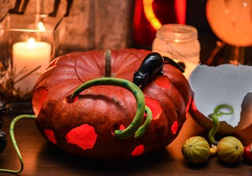 proslava-halloween-brankow9