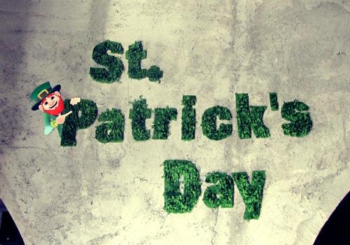 proslava-saint-patrick-day0