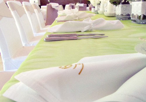 Venčanje Milica & Bojan